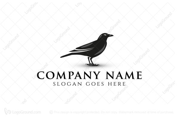 Crows logo black crow logo sciox Choice Image