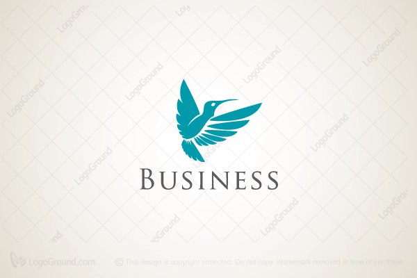 Logo for sale: Creative Hummingbird Logo