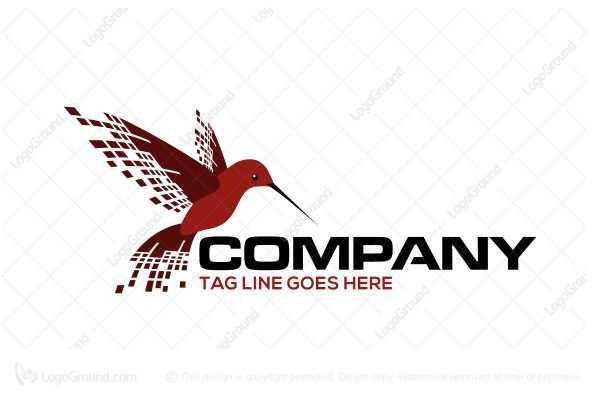 Logo for sale: Hummingbird Data Logo