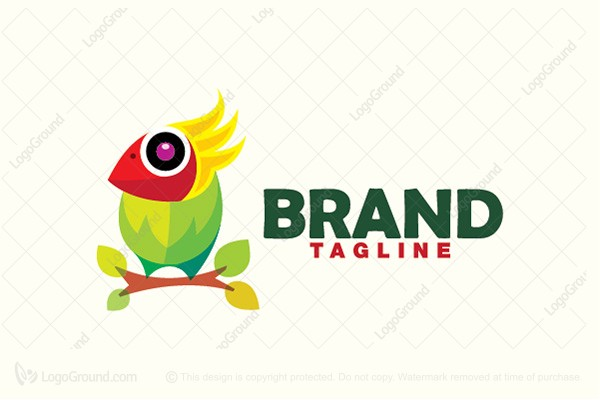 Logo for sale: Colorful Bird Logo
