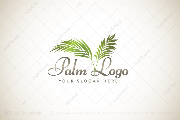 Palm Leaves Trees Blackout Font 28 Images Palm Tree