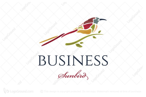 Logo for sale: Fire Tailed Sunbird Logo