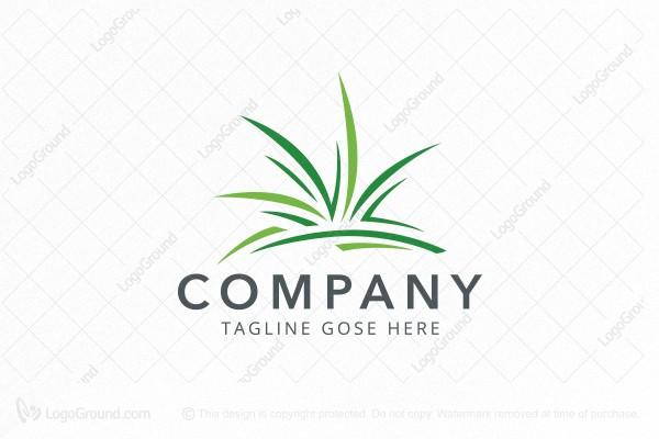 Turf Grass Lawn Logo