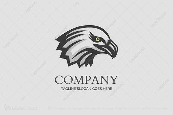 Logo for sale: Eagle Head Logo