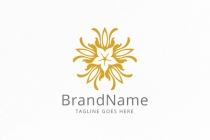 Beautiful Flower Ornament Logo