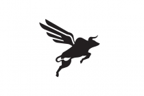 Flying Bull Logo