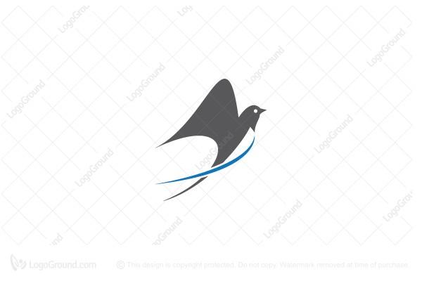 swallow birds logos for sale swallow birds logos for sale