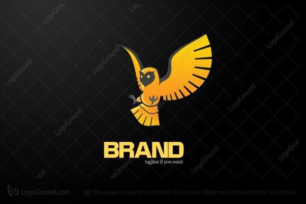 Exclusive Logo 19928, Golden Owl Logo