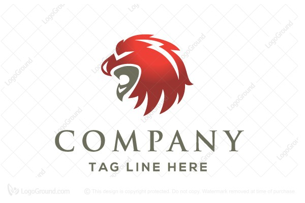 logo for sale lionhawk bird lion logo design logo