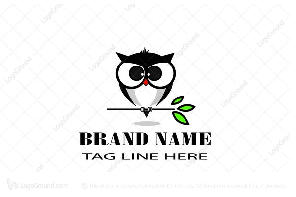 Logo for sale: Owl On The Branch Logo