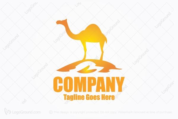 d185599d4a8 Logo for sale: Desert Camel Logo