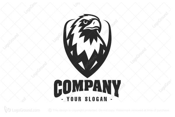201752152017 08 073427052falcon 2 jpg rh logoground com Eagle Shield Badge American Eagle Shield