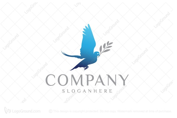 Elegant dove logo logo for sale elegant dove logo altavistaventures Choice Image