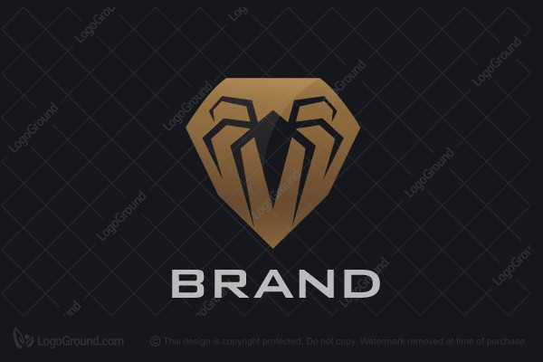 Logo for sale: Spider Logo
