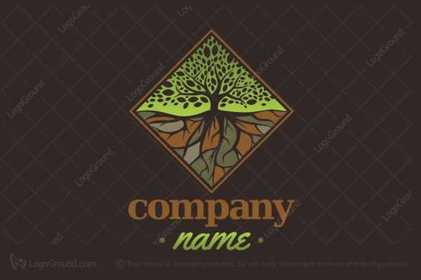 Logo for sale: Diamond Tree And Roots Logo