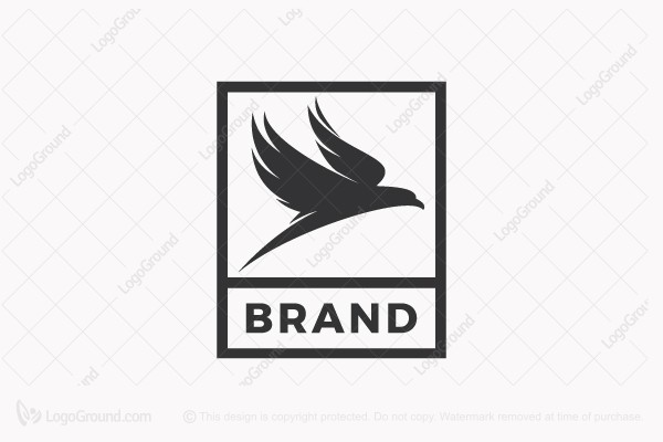 Logo for sale: Elegant Bird Of Prey Logo