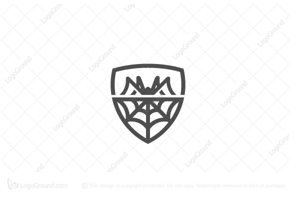 Logo for sale: Spider Web Security Logo