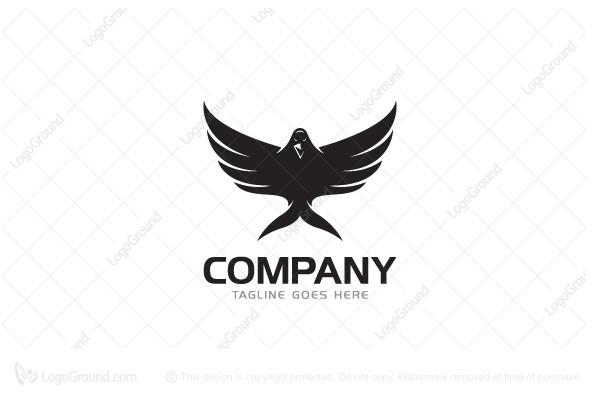 raven logo rh logoground com raven logging raven logoff