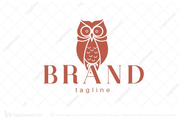 Logo for sale: Owl Perched On The Lettering Logo