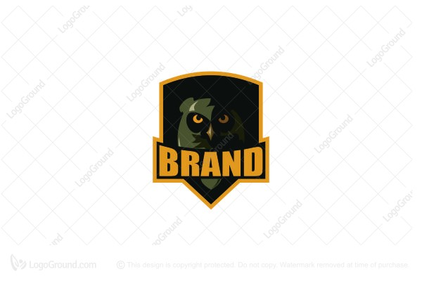 Logo for sale: Owl Logo
