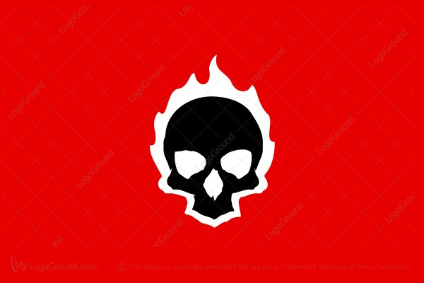 Logo for sale: Skull On Fire Logo