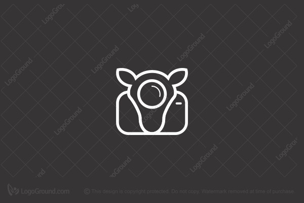 Logo for sale: Llama Picture Logo
