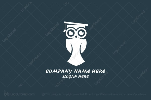 Logo for sale: Education Owl Logo