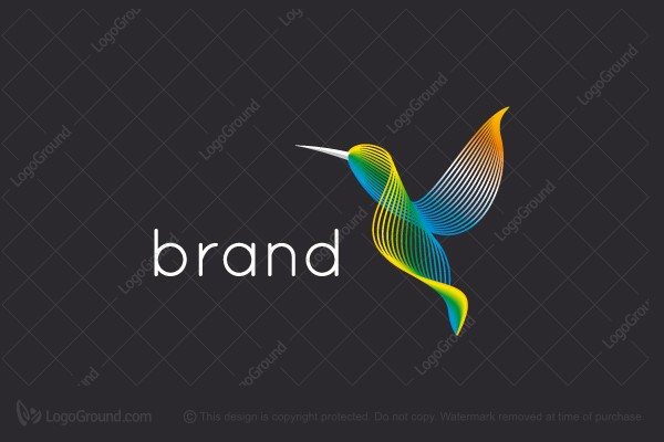 Logo for sale: Multiline Hummingbird Logo