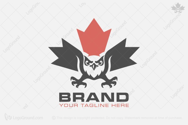 Logo for sale: Owl Of Canada Logo