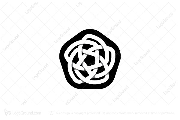 Logo for sale: Stylized Star Knot Flower Logo