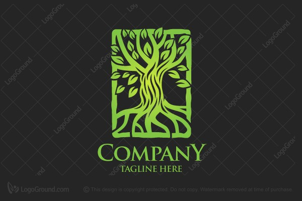 Logo for sale: Nature Tree Logo