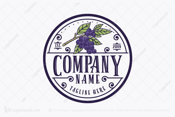 Logo for sale: Blueberry Brand Logo