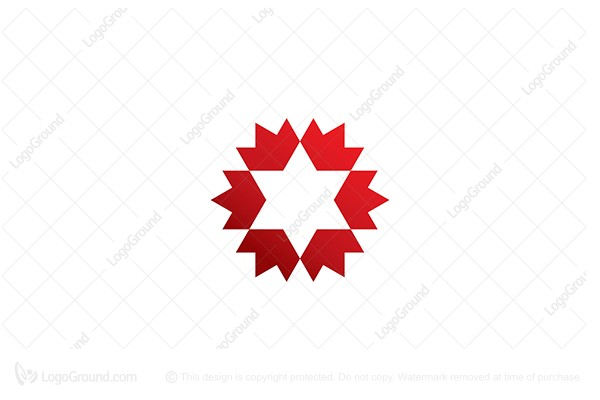 Logo for sale: Star Flower Logo
