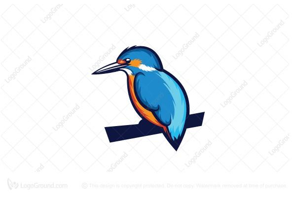 Bird Kingfisher Logo