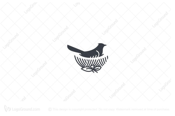 Logo for sale: Bird Nest Logo