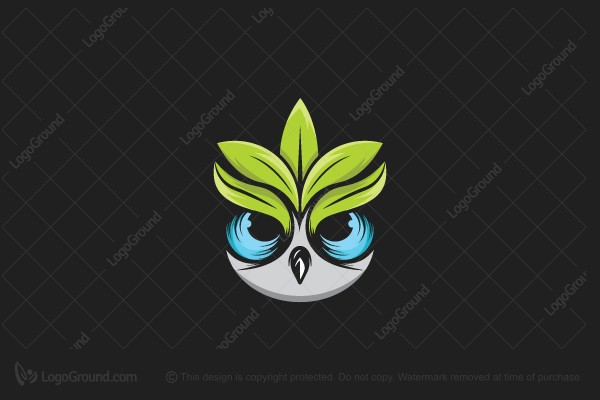 Logo for sale: Nature Owl Logo