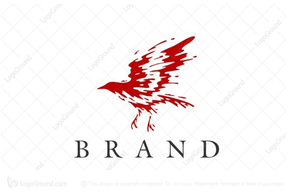 Logo for sale: Splash Bird Logo