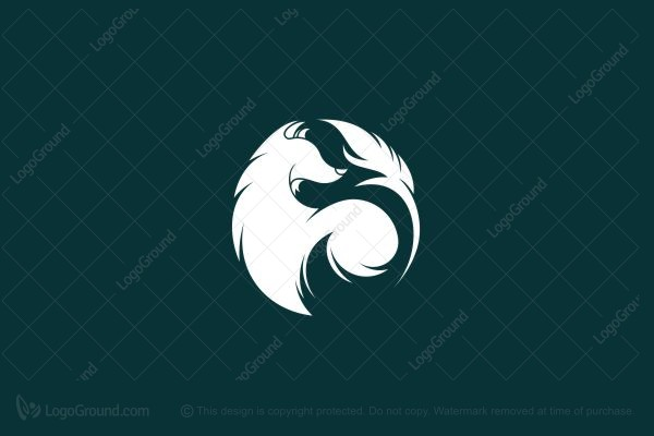 Logo for sale: Wolf And Feather Logo Illustration Logo