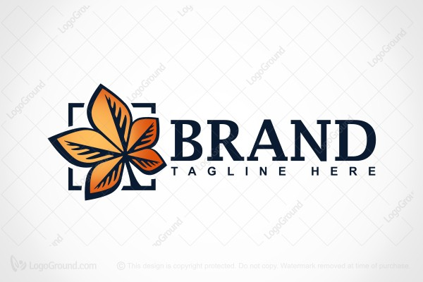 Logo for sale: Golden Maple Logo