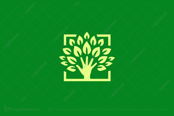 Logo for sale: Tree Hand Logo