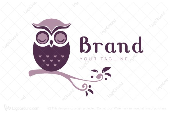 Logo for sale: Sleepy Owl Logo
