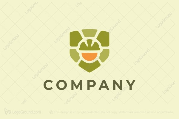Logo for sale: Hard Hat Turtle Logo