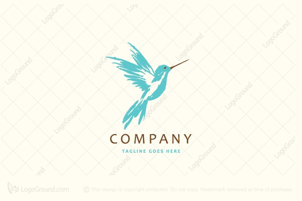 Logo for sale: Hand Drawn Hummingbird Logo