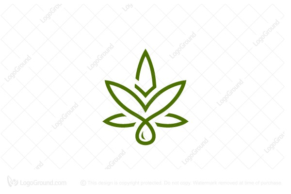 Logo for sale: Eagle Extract Cannabis Logo Cbd