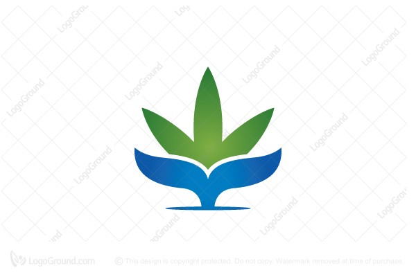 Logo for sale: Whale Ocean Cannabis Logo