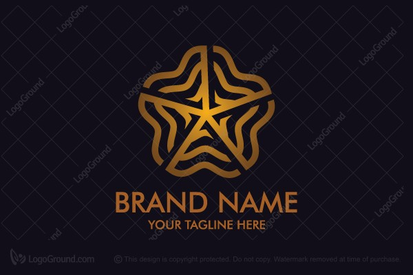 Logo for sale: Abstract Star Logo