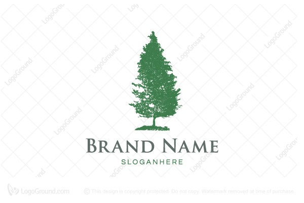 Logo for sale: Natural Pine Tree Logo