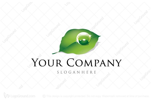 Logo for sale: Clean Leaf With Drop Logo