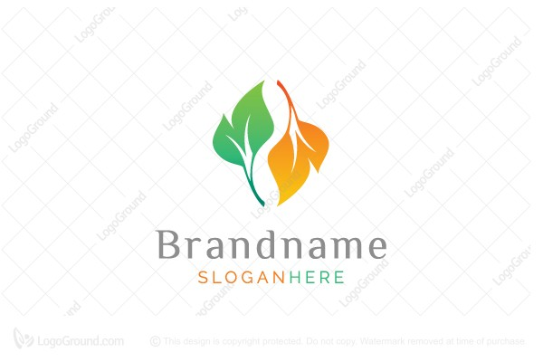 Logo for sale: Season Leaf Logo