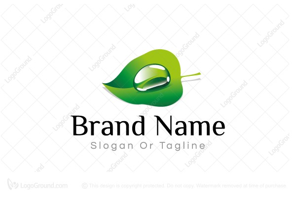 Logo for sale: Leaf With Drop Logo